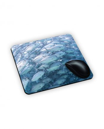 mouse tappetino pesci azzurri