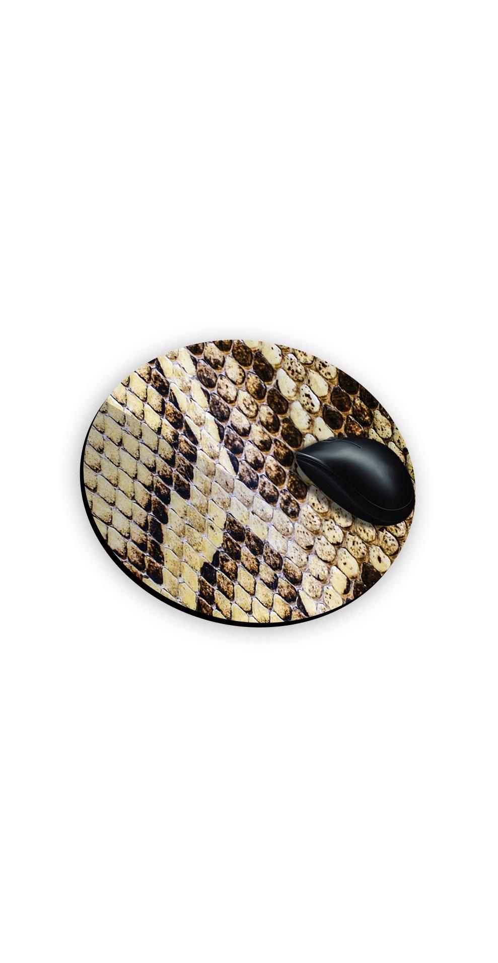 snake-skin